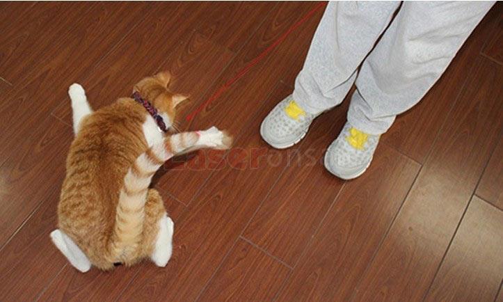 5mW 超ミニレーザーポインター猫